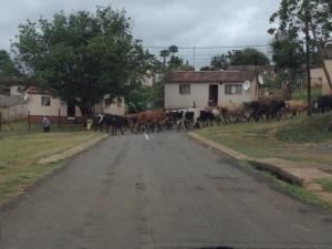 Township traffic